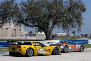 New Paddock Corvette Club